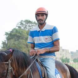 horse-coaches-1